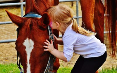 Cavalli ed emozioni